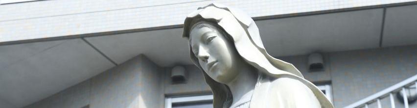 カトリック大宮教会  ミサ再開のお知らせ